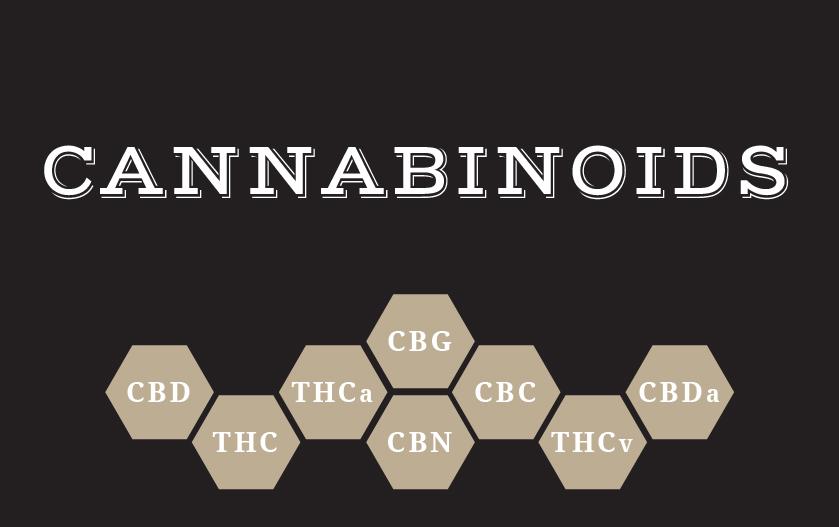 cannabinods