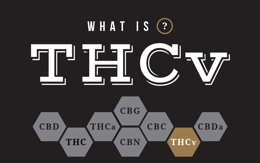 what is thcv
