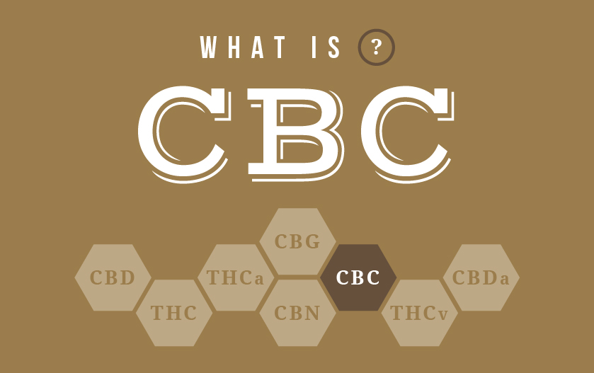 what is cbc